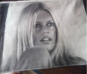 Pochette Brigitte Bardot Vinta al Concorso Phyto