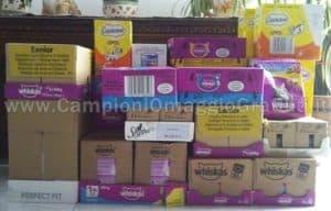 Ricevute-forniture-annuali-di-prodotti-Whiskas