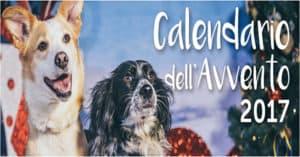 Calendario dell'Avvento Innovet