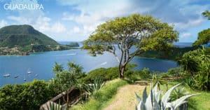 Concorso Vinciunsogno Vinci gratis viaggio in Guadalupa